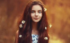 Picture hair, portrait, chamomile, the beauty