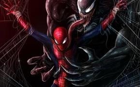 Picture Art, Fiction, Marvel, Venom, Venom, Spider Man, Symbiote