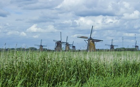 Wallpaper the sky, grass, clouds, nature, mill, reed, mill, Holland, mill, holland, kinderdijk, mills, kinderdijk
