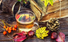 Picture leaves, berries, tea, Board, books, Cup, bump, Rowan, chestnuts, strainer