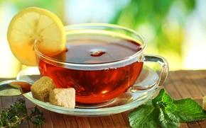 Picture table, lemon, tea, spoon, Cup, sugar, mint, saucer, Mat