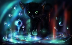 Picture water, bubbles, Kitty