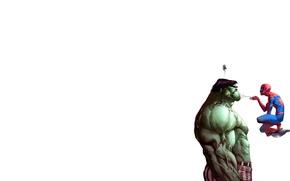 Wallpaper people, web, spider, spider, Hulk, marvel, man, hulk, suicide
