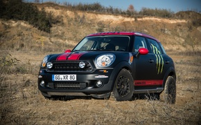 Picture Countryman, Black, Strip, Lights, Mini Cooper, MINI, Matt, Mini Cooper, X-raid