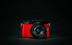 Picture macro, camera, Panasonic Lumix GM5
