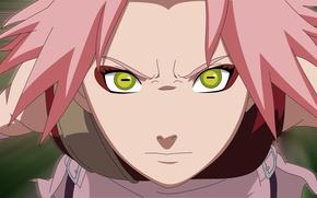Picture sugoi, strong, yellow eyes, ninja, chakra, pink hair, kunoichi, pretty, girl, face, tsundere, Haruno Sakura, ...