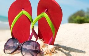 Picture sand, beach, summer, shell, summer, beach, sand, slates, vacation, accessories, seashells