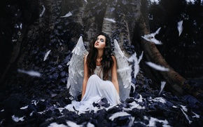 Picture look, girl, face, background, model, hair, wings, feathers