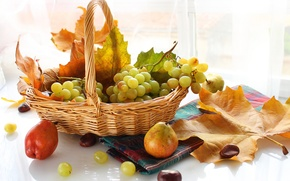 Picture autumn, leaves, berries, basket, grapes, fruit, pear