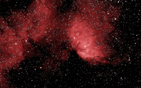 Wallpaper space, nebula, emission, Tulip Nebula