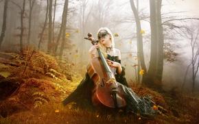 Wallpaper bass, girl, trees, autumn, forest, leaves