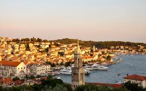 Wallpaper sea, palm trees, coast, island, Marina, home, boats, resort, boats, Croatia, island Hvar