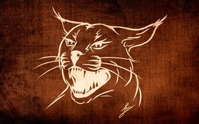 Picture cat, background, animal, Wallpaper, figure, texture, styling, lynx, wild, collection, LBes, Lbes