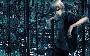 Picture night, the city, mesh, anime, art, guy, Tokyo ghoul, tokyo ghoul, Ken kanek, etora