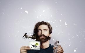Wallpaper beard, creative people, Chipmunk