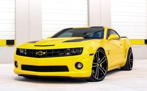 Picture Chevrolet, Camaro, Transformers, Edition
