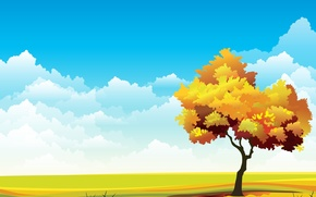 Picture the sky, grass, tree