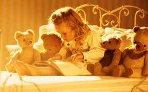 Picture toys, bears, girl, book