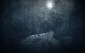 Picture winter, road, forest, snow, trees, night, the moon, twilight, the full moon