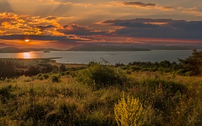 Picture forest, summer, the sky, grass, water, the sun, clouds, rays, trees, landscape, sunset, flowers, mountains, …