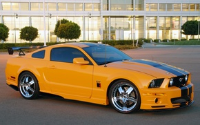 Picture Mustang, Roush, Stage