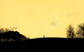 Picture the sky, trees, sunset, birds, people, silhouette