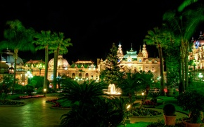 Picture greens, flowers, night, design, lights, palm trees, lawn, tree, track, garden, lights, fountain, the bushes, …