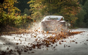 Picture car, bentley, Leaves