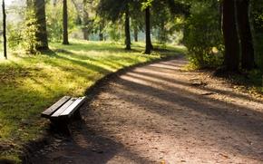 Picture forest, sunset, Park, bench, Pavlovsk