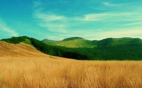 Wallpaper field hills, grass