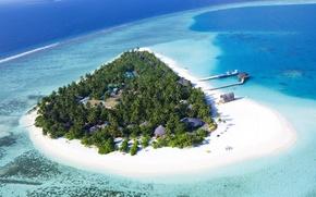 Picture beach, palm trees, home, Island, pierce, reefs