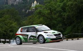 Picture background, Wallpaper, Russia, rally, racer, rally, the winner, s2000, Juho Hanninen, Yalta, Skoda, Hanninen Juho, …