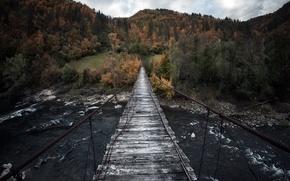 Picture Bulgaria, Arda river, Rhodope mountains