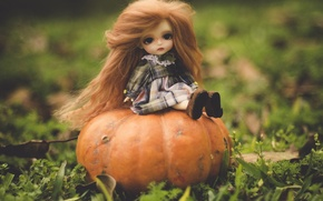 Picture nature, toy, doll, pumpkin, red, sitting, long hair
