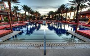 Picture palm trees, pool, bahamas, nassau, Nassau, atlantis paradise island, Bahamas