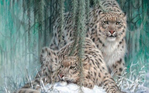 Wallpaper winter, snow, IRBIS, snow leopard, painting, leopards, Ghost In The Moonlight, Larry Fanning, snow leopards