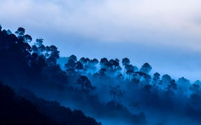 Picture clouds, trees, mountains, fog, India, Uttarakhand, Kausani