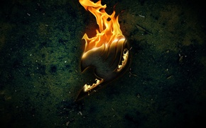 Picture fire, fairy tail, tale of fairy tail, fairy tail, the sign of the Guild