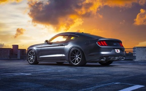 Picture Mustang, Ford, Muscle, Car, Clouds, Sky, Sunset, Wheels, Rear, 2015, Velgen