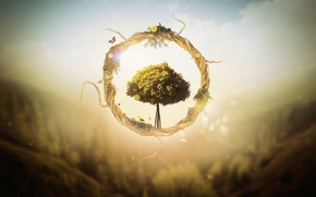 Picture tree, graphics, round, render, links