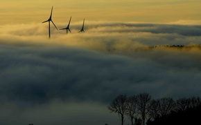 Picture forest, mountains, fog, morning, windmills
