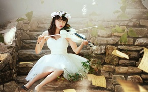 Picture cat, girl, music, violin