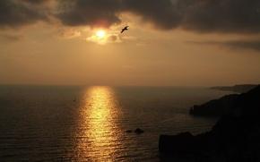 Wallpaper the sun, sunset, night