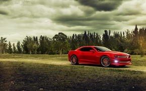 Picture trees, red, Chevrolet, Camaro, red, Chevrolet, muscle car, muscle car, Camaro