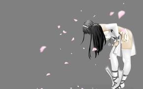 Picture girl, petals, Sakura, corrects