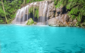 Picture blue water, nature, waterfall, trees, river, forest