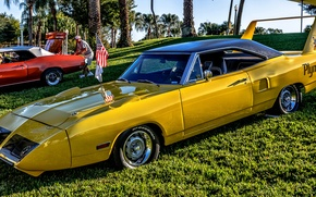 Picture yellow, Plymouth, Plymouth Superbird, 1970 Plymouth Road Runner Superbird