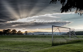 Picture field, sport, morning, gate