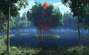 Picture forest, grass, leaves, trees, lake, red, island, render
