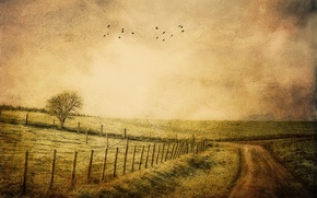 Picture road, style, background, the fence